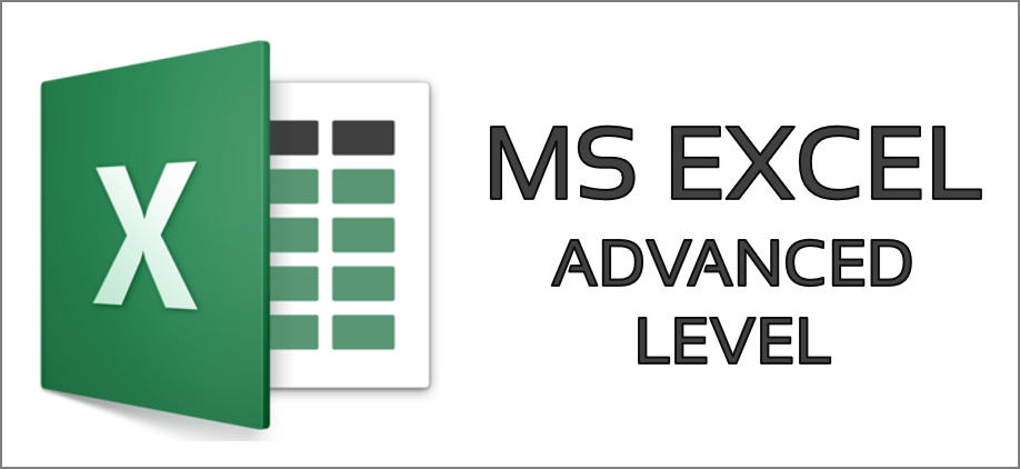 MS Excel Advanced Level